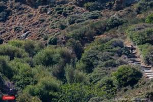 4ο Andros Trail Race 2019- Ακόμα μία επιτυχημένη διοργάνωση!